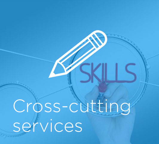 Cross-cutting services