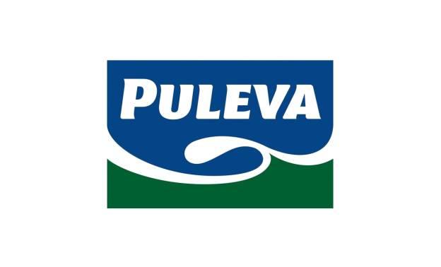 Investigacion - Auditoria Comun - Puleva
