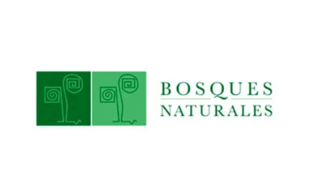 Medio Ambiente - Bosques Naturales