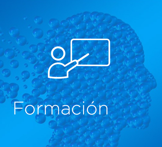 fomracion-on