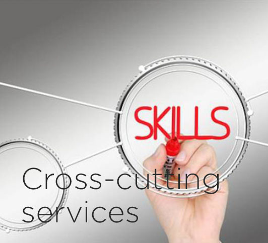 Cross-cutting services-off