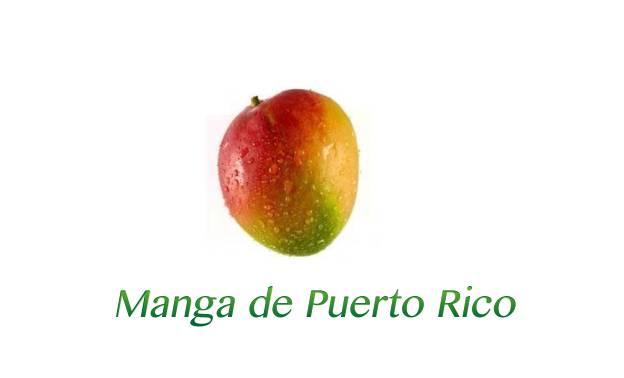 Alimentacion - Manga de Puerto Rico